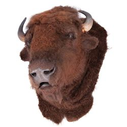 Buffalo head prop from Dances with Wolves.