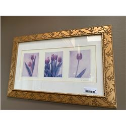 Framed Tulip picture