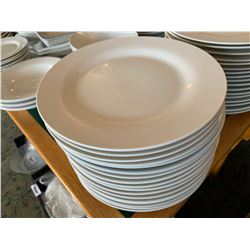 Lot of approx 50 large restaurant plates