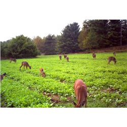 2 - WISCONSIN FOOD PLOT PACKAGE