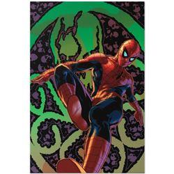 Amazing Spider-Man #524 by Marvel Comics