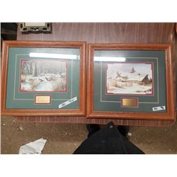 Pictures in Frames Signature Collection