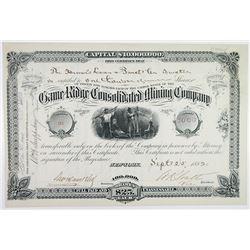 Game Ridge Consolidated Mining Co., 1882 I/U Stock Certificate