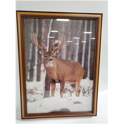 18 X 24 FRAMED DEER PICTURE