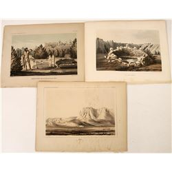 Lithographs from an Early Railroad Survey: Zuni Indians  (124313)