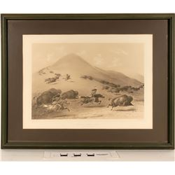 Geo. Catlin's Bufallo Hunt, Chase - Framed Litho Reproduction  (125093)