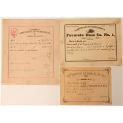 Certificates of Membership (Unused, 3)  (125631)
