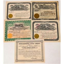 Five Mexico Based Cattle Company Stock Certificates  (124559)