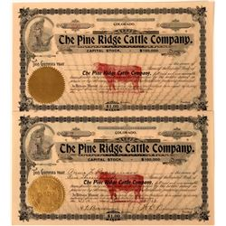 Pine Ridge Cattle Company Stock with Killer Red Underprint of a Bull  (123304)