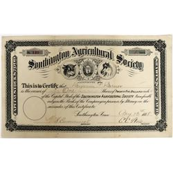 Southington Agricultural Society Stock  (123281)