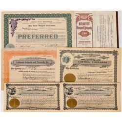 Wine Vineyard Stock Certificates (6)  (124586)