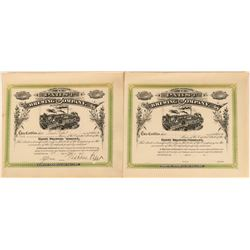Pabst Brewing Company Stock Collection  (123288)