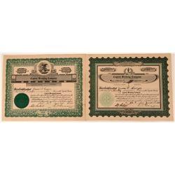 Capital Brewing Company Stock  (123352)