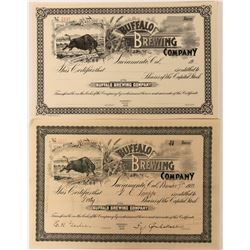 Two Buffalo Brewing Company Stock Certificates  (123324)