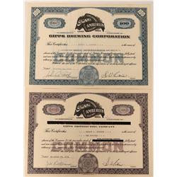 Gipps Brewing Company Stocks (2)  (123398)