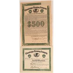 Canandaigua Brewing Company Stock and Bond  (123354)