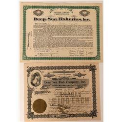 Deep Sea Fish Company Stocks  (123411)