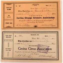 Covina Citrus Association Stocks  (123332)