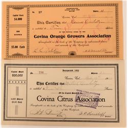 Covina Citrus Association Stocks  (123332)