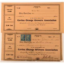 Covina Orange Growers Association  (123333)