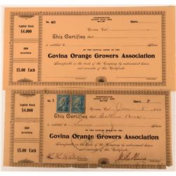 Covina Orange Growers Association  (123333)
