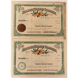 Hermosa Orange Company Stocks with Colorful Orange Vignette  (123392)