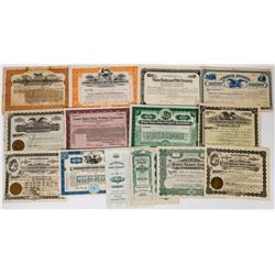 Milk and Dairy Stock Certificates (14 Early, all different)  (113737)