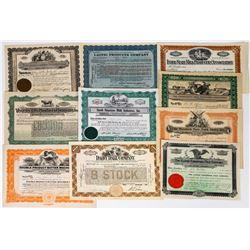 Ten Different Milk and Dairy Stock Certificates  (113736)