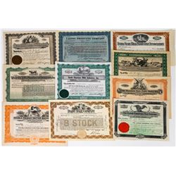 Ten Different Milk and Dairy Stock Certificates  (113736)
