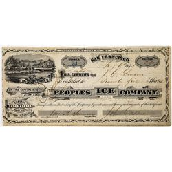 Peoples Ice Company Stock Certificate  (113719)