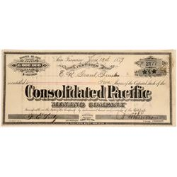 Consolidated Pacific Mining Co. Stock, Bodie, Cal. 1879  (118609)