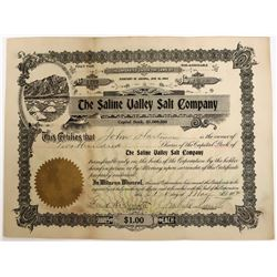 Saline Valley Salt Company Stock with Saline Valley vignette  (123278)