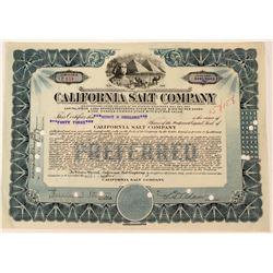 California Salt Company Stock  (123355)