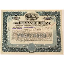 California Salt Company Stock  (123355)