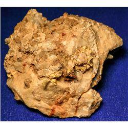 Visible Gold Specimen from North Bonanza Mine  (123117)