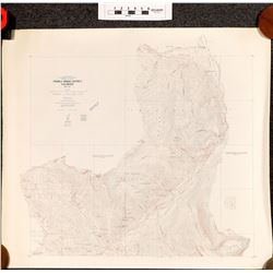 U.S.G.S. Ten Mile Mining District Topographical Maps (2)  (120333)