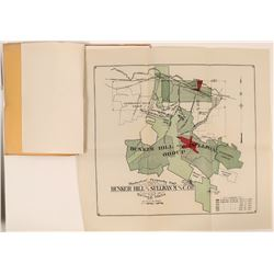 Bunker Hill & Sullivan Mining & Concentrating Annual Financials   (119583)