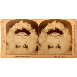 Fisk & Brooks - Presidential Election 1888 Stereo-view  (123229)