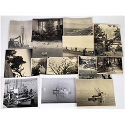 Monterey Peninsula Photos (12)  (124524)