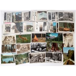 Sequoia National Park Postcard Collection  (125909)
