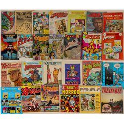 Adult Comic Sampler Box  (124460)