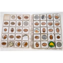 Dinosaur Themed Elogated Cents, Tokens and Pinbacks  (120244)