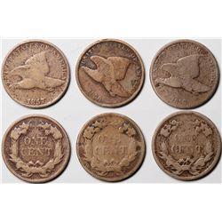 Flying Eagle Pennies  (124177)
