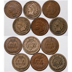 Indian Head Pennies (6)  (124176)