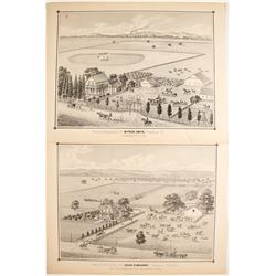 Thompson & West Lithographs  (82459)