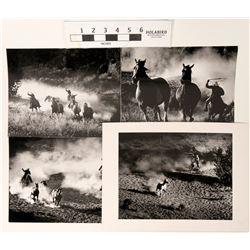 Wild Horse Round Up Photos (4)  (122807)