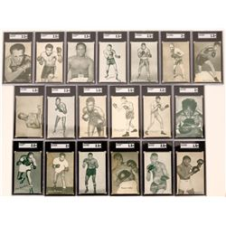 Exhibit Boxer Cards  (119269)