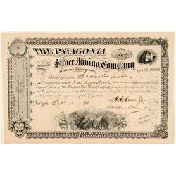 Patagonia Silver MIning Company Stock  (91699)