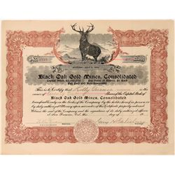 Black Oak Gold Mines, Consolidated Stock, 1906, Soulsbyville, Cal.   (118611)