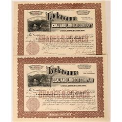 Lackawanna Coal & Lumber Stocks, 1914 (2)  (111818)